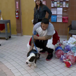 Danny spending time at the dog shelter